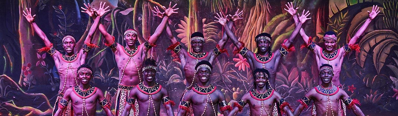 SafariPark Safari Cats Dancers  Acrobats