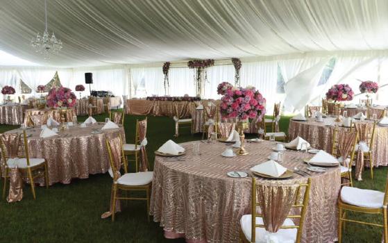 The Paradise Bridal Champagne Brunch