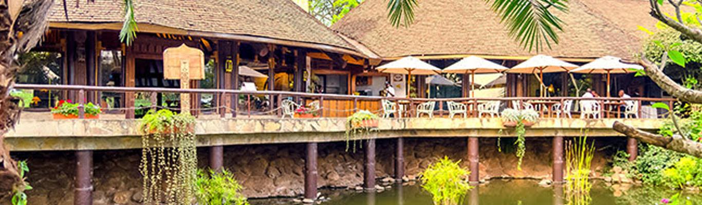 SafariPark PARADISE LOBBY CAFE